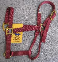 "Halter Nylon Average (800-1100 lbs.)  - 1"" Quality Nylon Horse Halter by Hamilton with solid brass hardware."
